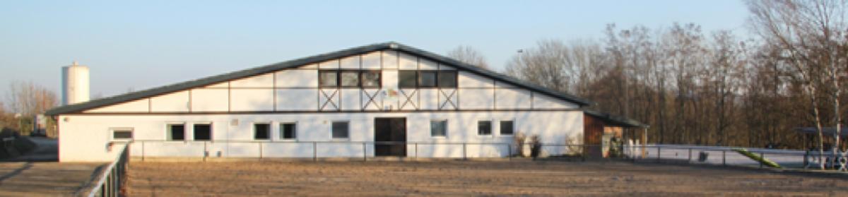 Reiterverein Lauffen e.V.